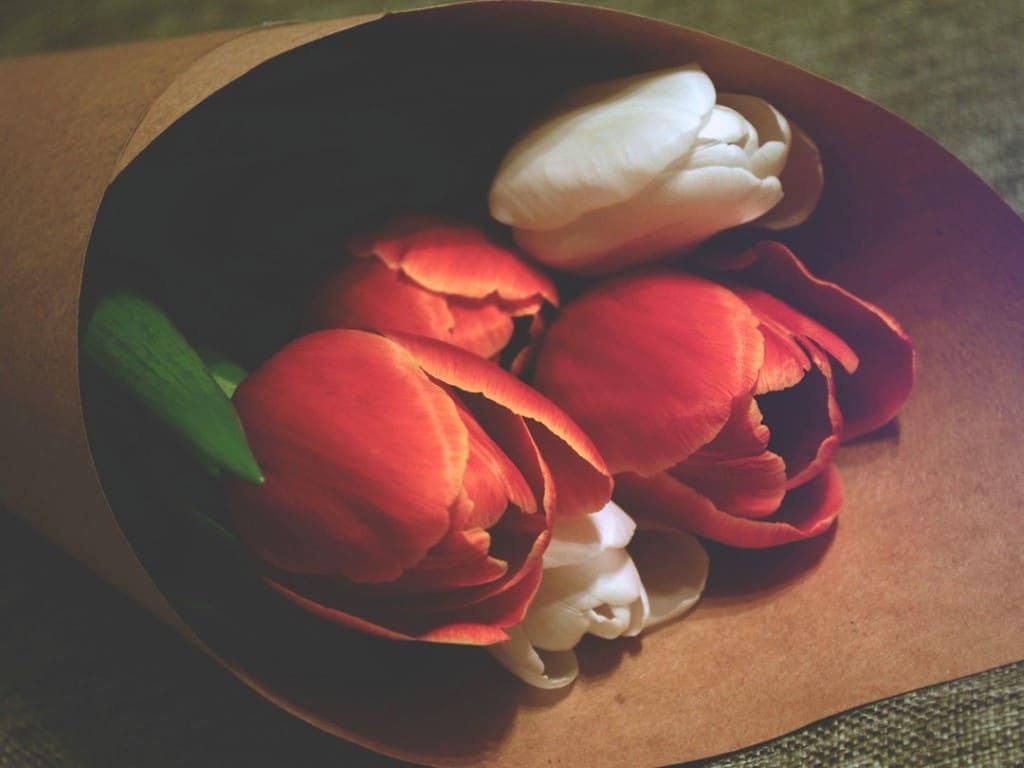 Cómo dejar de mendigar amor